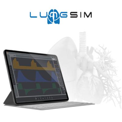 LungSim™: Ventilator simulator paired with patient simulator