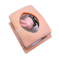 Box trainer per skill cardiochirurgici di base 3