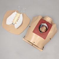 Simulatore ad Alta Fedeltà per il Training Chirurgico Cardiotoracico 4